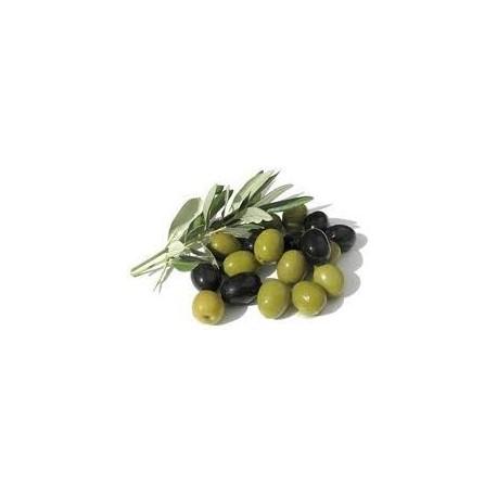 Aceitunas Verdes 100 grs